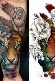水彩動物紋身--幾張逼真的重水彩老虎等動物紋身圖案