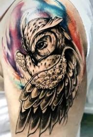 猫头鹰刺青图--9张精致的猫头鹰纹身图案作品