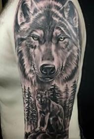 霸气的一组眼光犀利的狼图案纹身作品