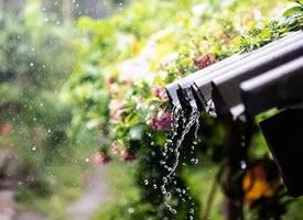 夏天是一个时不时就是一场暴雨的季节