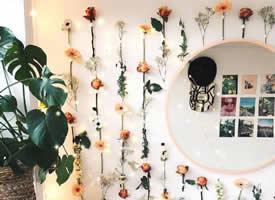 照片墙和绿植花束的绝妙组合搭配效果图