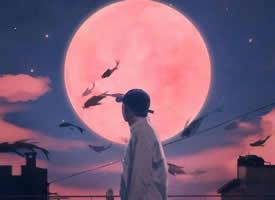 好看的月亮與太陽的卡通壁紙