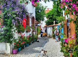 土耳其的大街小巷美如童话