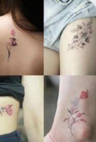 纹身店报价格在200元左右的女生小清新纹身图案参考