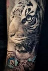 寫實的一組百獸之王老虎紋身圖案作品