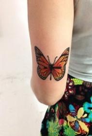 女孩子独爱的15张胡蝶纹身作品图片