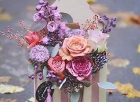 鲜花放在信封里代表着鲜花与心愿