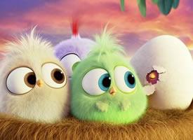 超可爱萌萌哒愤怒的小鸟图片