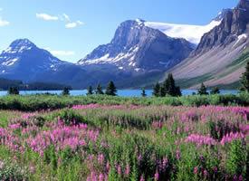 峰巒秀美,它的春夏秋冬都是那么迷人