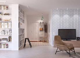 65平小而美的精巧单身公寓装修效果图