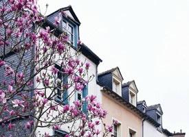 法国雷恩,寻常的街头流露出丝丝浪漫的气息