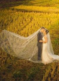 """一套深秋金黄""""酥脆""""的感觉婚纱拍摄图"""