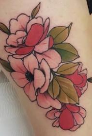 暗色彩的一组newschool花卉植物纹身图案