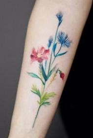 小手臂上小清爽的花朵纹身图片9张