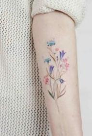 适合小臂和小腿唯美小清新的花朵纹身图案
