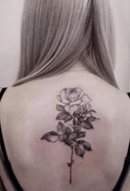 适合女生的各部位唯美的素花纹身图案