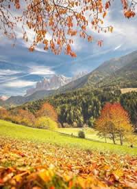 盖斯勒自然公园,像是定格在油画里的田园美景