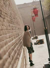 刘雯 X LIUWEN x ERDOS系列羊绒衫 & Zara印花裙
