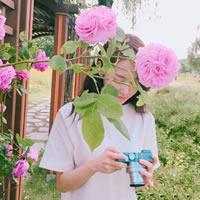 一组少女与花的清新唯美头像欣赏