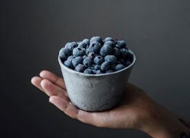 一组超有意境的蓝莓摄影图片欣赏