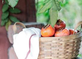 刚刚摘下来的新鲜柿子图片欣赏