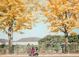 一组秋天唯美的画面壁纸欣赏