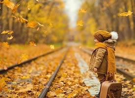 秋天挂在树上的好像一朵朵黄色的小花,飘落在空中