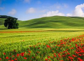 美丽的大自然风景图片高清桌面壁纸