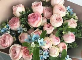 用一束美美的花装饰生活