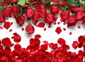 一组超浪漫唯美的红玫瑰图片欣赏