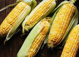 一组健康营养的玉米图片欣赏