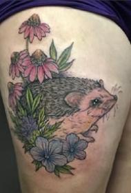 刺猬刺青:一组可爱的小刺猬纹身图片欣赏