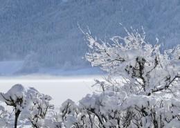 唯美冰雪風景圖片_10張