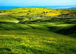 春天的草原風景圖片_10張