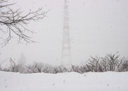 冬天的雪景圖片_10張