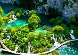 绿色清新自然风景图片_9张