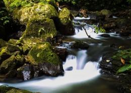 清澈的溪流图片_6张