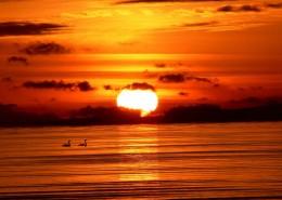 唯美的落日图片_10张