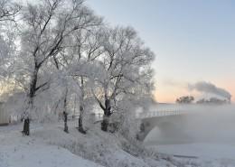 唯美的霧凇圖片_14張