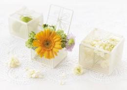 夏季花朵素材图片_23张