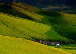 夏天的草原風景圖片_6張