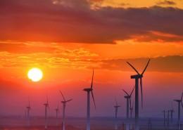 夕阳下的风车图片_5张