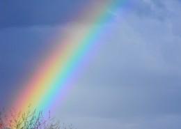 絢麗的彩虹圖片_11張