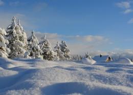 白雪皑皑的美景图片_13张