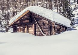 潔白無瑕的雪景圖片_10張