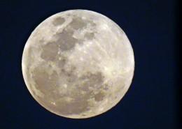 中秋圆圆的月亮图片_19张