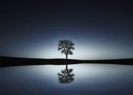 唯美自然風景圖片_10張