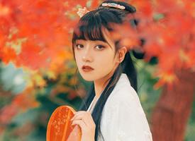 冷艳古风美女枫叶林性感写真图片壁纸