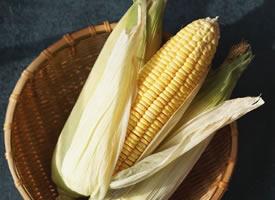 一组超文艺的玉米拍摄图片欣赏