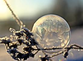 二十四节气立冬一股寒气入股的图片欣赏